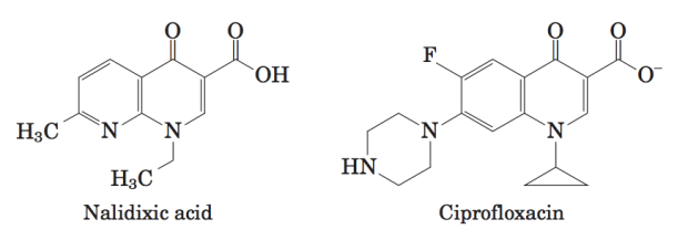 Clinical Significance of Topoisomerase Inhibitors